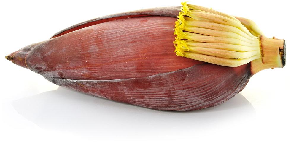 Mannelijke bananenbloem